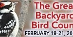 GBBC2011 blogbutton8 150x76 The 2011 Great Backyard Bird Count