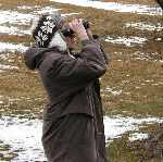 Bird Watching Tips For Bird Watching
